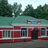 Вокзал на станции Злынка, Брянская область, Вышков