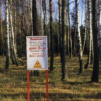 Sur la route de Zlynka, (zone contaminée), Вышков