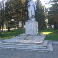 Памятник погибшим в Великой Отечественной войне. WW2 Red Army memorial, Жуковка