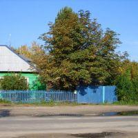1st Pervomajskiy, Жуковка