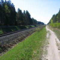 Железная дорога, Жуковка
