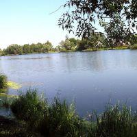 Панорама Базарского озера, Клетня