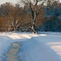 Московка зимой, Клинцы