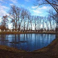 Пруд в городском парке, Клинцы
