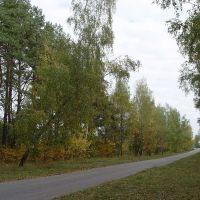 Осенняя дорога, Клинцы