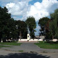 Памятник павшим подпольщикам группы доктора Павла Незымаева 3, Комаричи