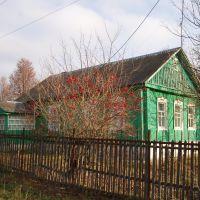 Домик в деревне (ул. Комсомольская, Комаричи), Комаричи