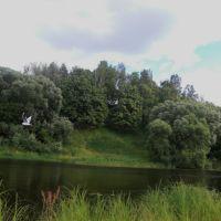 """Река Беседь """"Городок"""", Красная Гора"""
