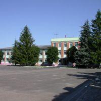 Здание администрации Красногорского района, Красная Гора