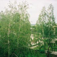 Kinoteatr-Ploshad-Uchilishe, Навля