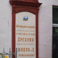 Школа № 3. Наличник / School #3. Platband, Новозыбков