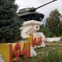 Tанк ИС-2 / Tank IS-2, Погар
