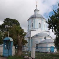 Церковь Св. Троицы / Тhe Holy Trinity church, Погар
