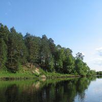 река Десна вблизи г.Жуковка Брянской области. Июнь 2008 года., Рогнедино