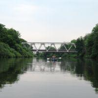 Река Десна. Июнь 2008 года., Рогнедино