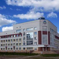 Управление ФНС, Рогнедино