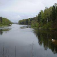 Канал, Рогнедино