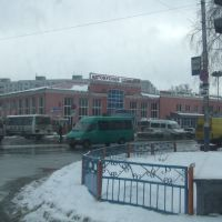 Bryansk - Main Bus Station, Рогнедино