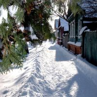 Севск. Зима2010, Севск