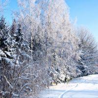 Севск.Зима2010, Севск