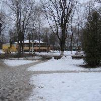 Парк, Стародуб