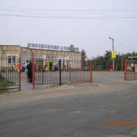 Сураж,автовокзал, Сураж