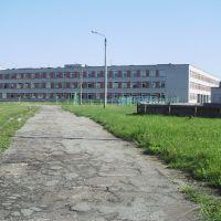 школа, Дятьково