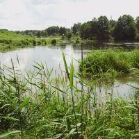 озеро, Дятьково