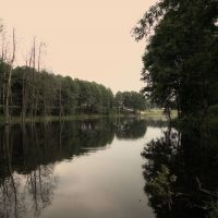 красивое озеро, Дятьково