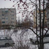 Январь 2011 г., Дятьково