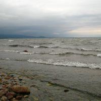 Берег Байкала (июнь 2010г.), Бабушкин