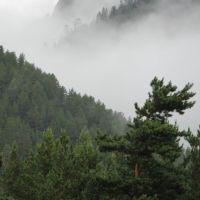 Баргузин, Баргузин