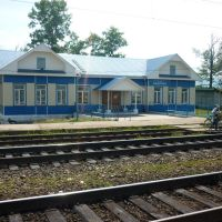 Vydrino railway station, Выдрино