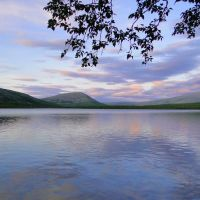 Озеро. Верховья р. Бутуи. Вид на восток, Гусиное Озеро