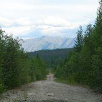 Дорога влоль БАМа/The way along BAM, Гусиное Озеро