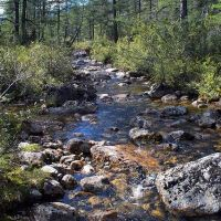 горный поток, Гусиное Озеро