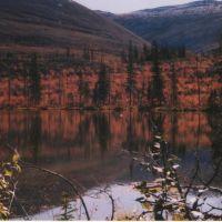 Озеро возле дороги, Гусиное Озеро