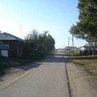 с. Тимлюй. слева ул. Школьная д. 25., Каменск