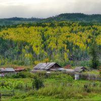 Осень в Забайкалье., Кижинга