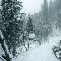 The Siberian snow / Сибирский снег_March, 2006, Петропавловка