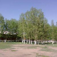 Школьная алея, Сосново-Озерское