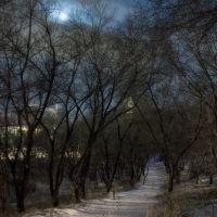 Ночная прогулка, Улан-Удэ