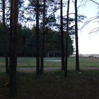 Футбольное поле на сельхозке, Анопино