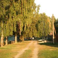 1ый речной пер. в сторону ул. набережной, Анопино