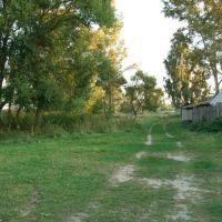 дорога от 1го речного пер. на купальное место, Анопино