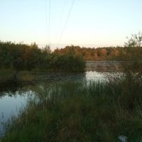 заросшая речка на 2ом речном пер., Анопино