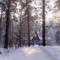 Зимнее утро, Анопино