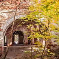 Заброшенная церковь по пути в Гусь-Хрустальный, Анопино