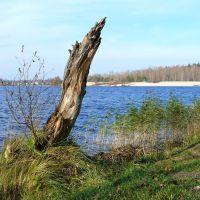 Городское озеро, Гусь-Хрустальный., Анопино
