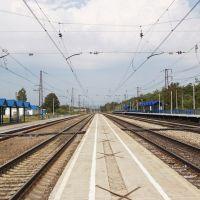Balakirevo railway station, Балакирево